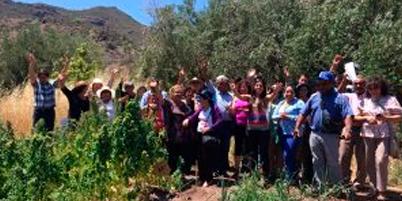 Programa de ciencia ciudadana CEAZA:Científicos ciudadanos reportan sobre eficiencia hídrica y adaptación regional del cultivo de Quínoa