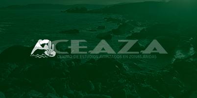 Nevadas débiles y fuertes ráfagas en la cordillera se pronostican para los próximos días en la Región de Coquimbo