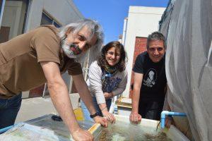 Colaboran en estudios de efectos de temperatura y acidez oceánica en organismos marinos en el contexto del cambio climático