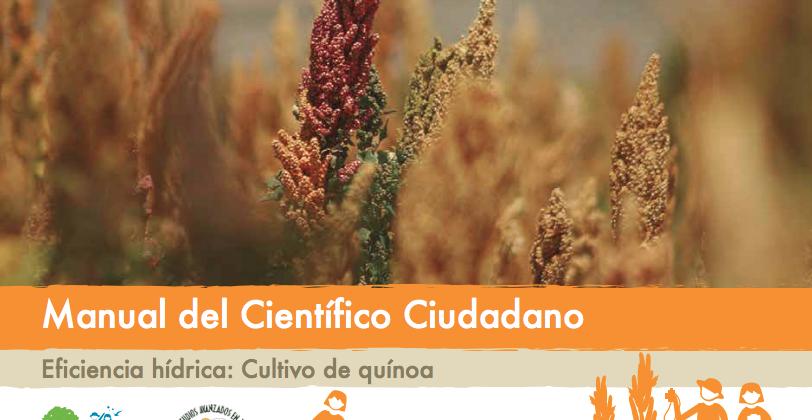 """""""Eficiencia hídrica: cultivo de quínoa"""""""