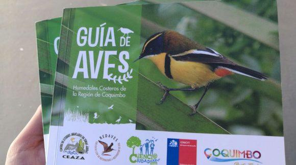 Municipalidad de Coquimbo reimprime 500 ejemplares de Guía de Aves de Humedales Costeros de la Región de Coquimbo