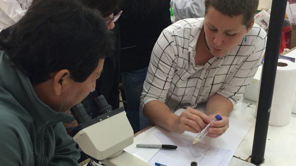 Como parte del Programa de Transferencia de Conocimientos del CEAZA, apoyado por CONICYT: Capacitan a profesores de liceos agrícolas en uso de herramientas biotecnológicas