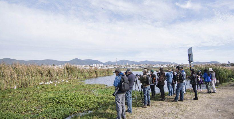CEAZA organiza múltiples actividades para celebrar el Día Mundial de los humedales