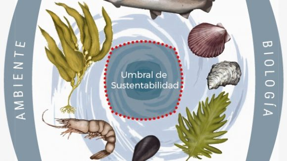 Estudio contribuye a establecer límites para una acuicultura sustentable