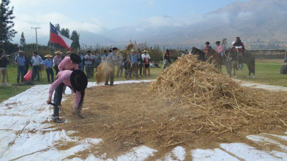 En jornada dedicada al grano ancestral: CEAZA presenta aporte a la educación, ventajas y bondades del cultivo de la quinoa en el Valle de Elqui