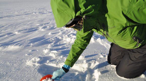 Primer diagnóstico sobre efecto de la contaminación en la nieve de la Cordillera de Los Andes