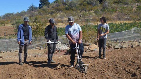 Capacitados por CEAZA en Hurtado: Estudiantes potencian habilidades en siembra de quinoa