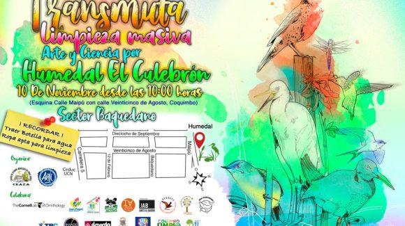 Este sábado 10 de noviembre: CEAZA difundirá su trabajo en Humedal El Culebrón