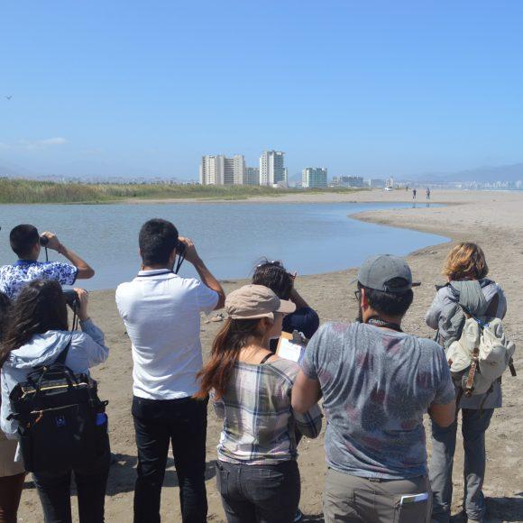 Actividades Día Mundial de Los Humedales: Destacan servicios de humedales en el ambiente y su necesidad de protección