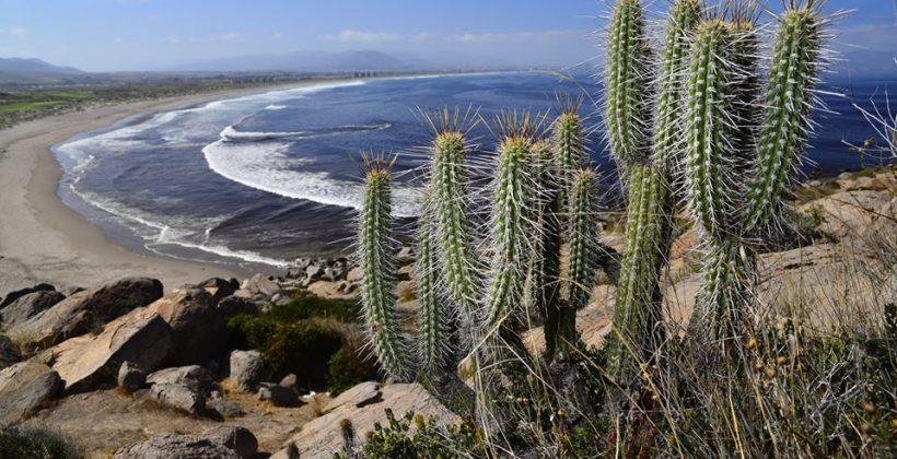 La Región de Coquimbo sigue experimentando déficit de precipitaciones