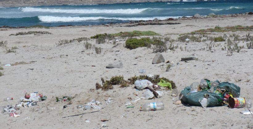 Plantean necesidad de cambios sociales para combatir contaminación por plásticos
