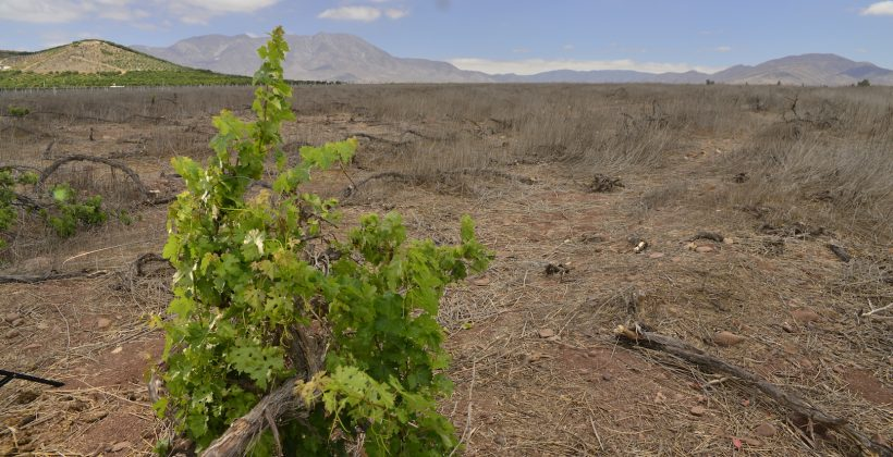 Sexto Informe de Evaluación del IPCC: Relevan consecuencias del Cambio Climático y la necesidad de medidas de adaptación en la Región de Coquimbo